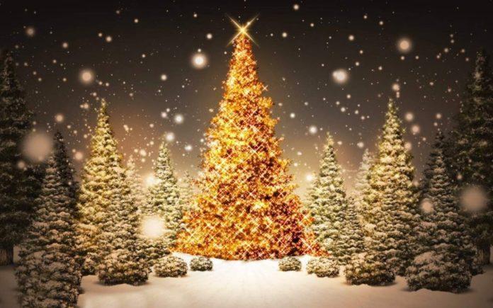 decorare albero di Natale